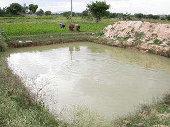Farmponds - DHAN Foundation